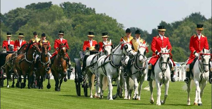 Top Tips for Royal Ascot