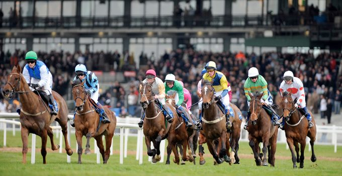 Navan races betting lines best way to bet on nba games